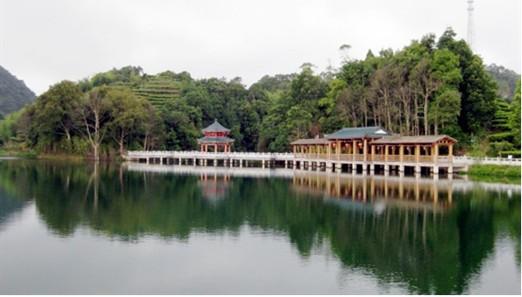 安骅汽车春季自驾游—穿越森林公园,享粤东美食